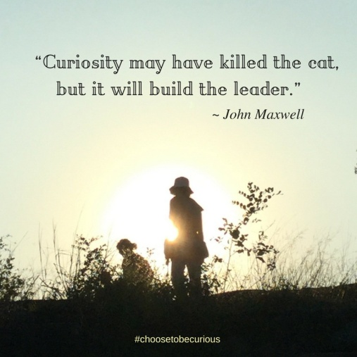pix-curiosity-may-have-killed-the-cat-but-it-will-build-the-leader-john-maxwell-j