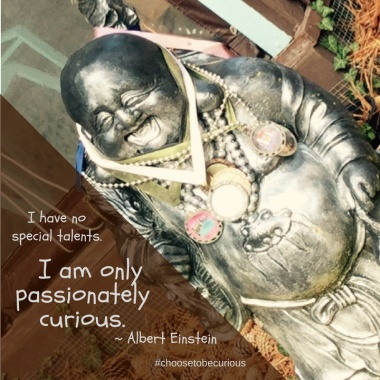 pix-einstein-passionately-curious-j
