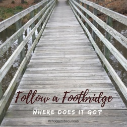 rbsh-follow-a-footbridge