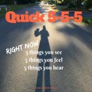 RBSH - QUICK_ 5-5-5