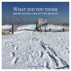 RBSH - snow