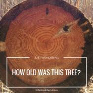 RBSH - tree age