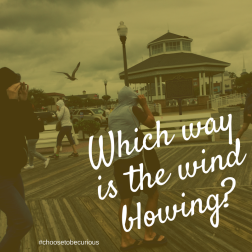Which way is the wind blowing?