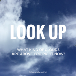 LOOK UP - What kind of clouds are above you right now?