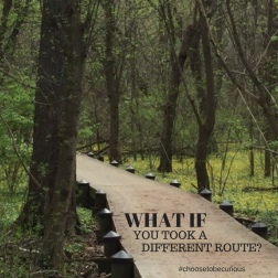 What if you took a different route?