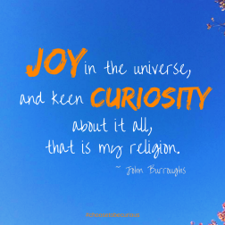 #mycuriouseyes Under the lovely leadership of Curiosity Global founder Karen Ward, I joined a world-wide group in devoting two weeks to using our curious eyes. In the end, it was a reminder: if we look for things, we're much more likely to find them!
