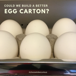 Kitchen - could we build a better egg carton?
