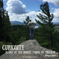 """Curiosity is one of the purest forms of freedom."" ~ Mario Livio"
