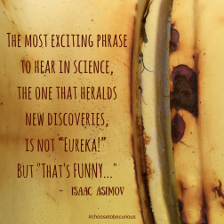 PIX - Asimov - the most exciting phrase to hear in science