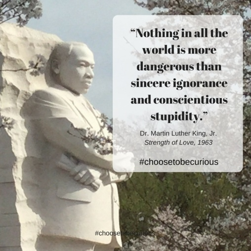 PIX - MLK on ignorance