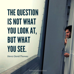 Thoreau - The question is not what you look at, but what you see