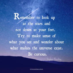 Hawking - Remember to look up at the stars and not down at your feet. Try to make sense of what you see and wonderf about what makes the universe exist. Be curious.
